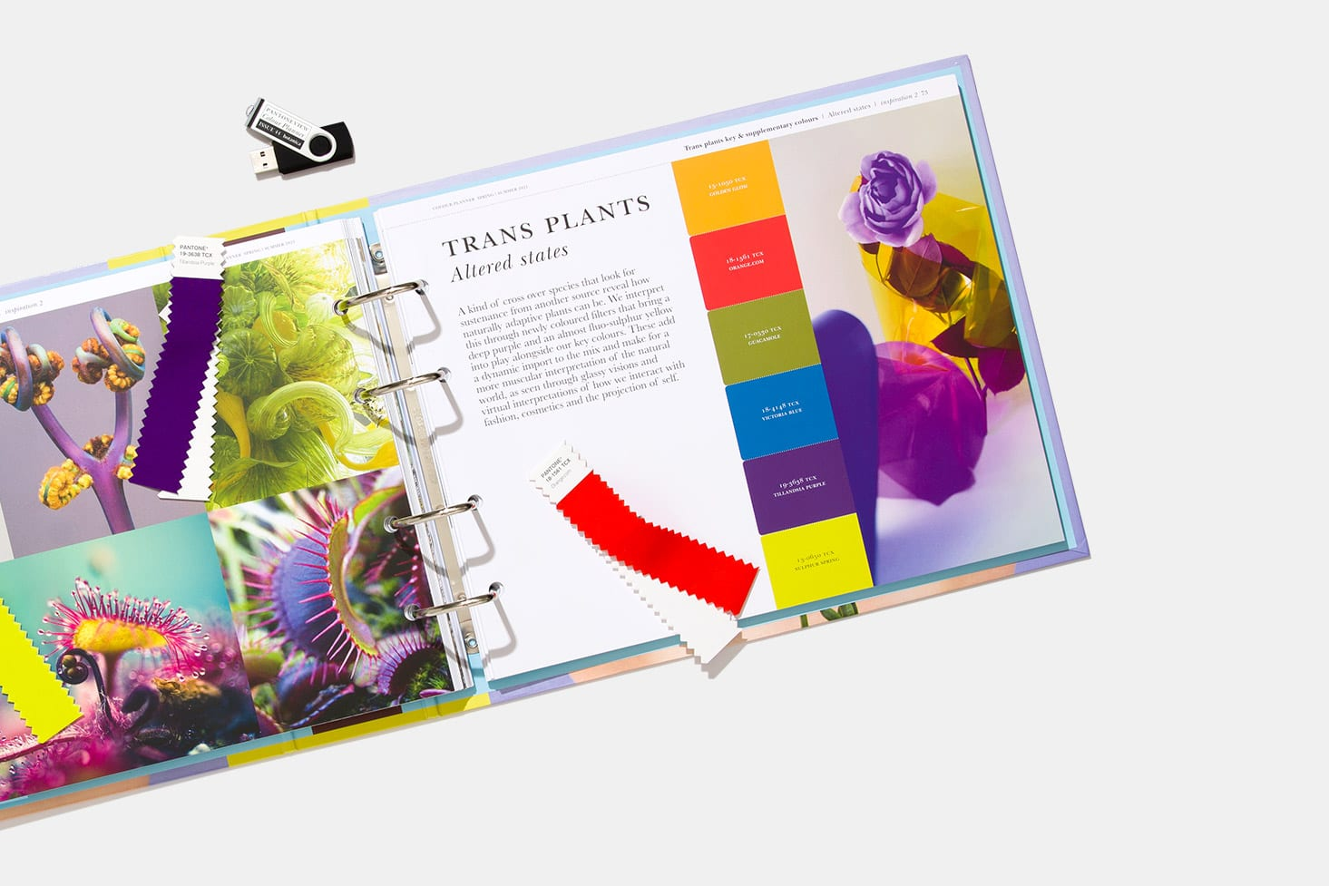 Pantone Launches Spring Summer 2021 Color Planner House Tipster Industry